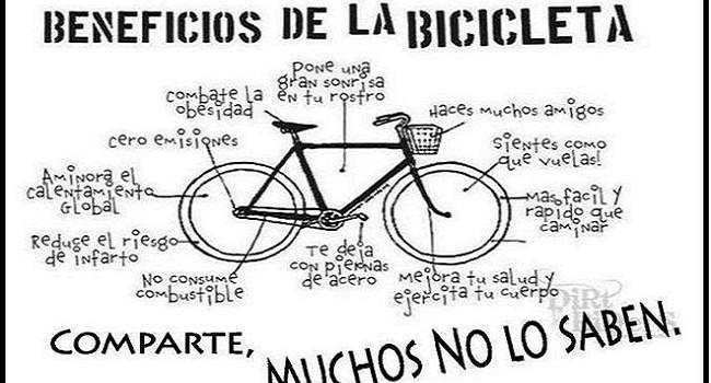 Bicicleta Educación Física Integral 20